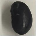 一方向から見た黒豆の画像